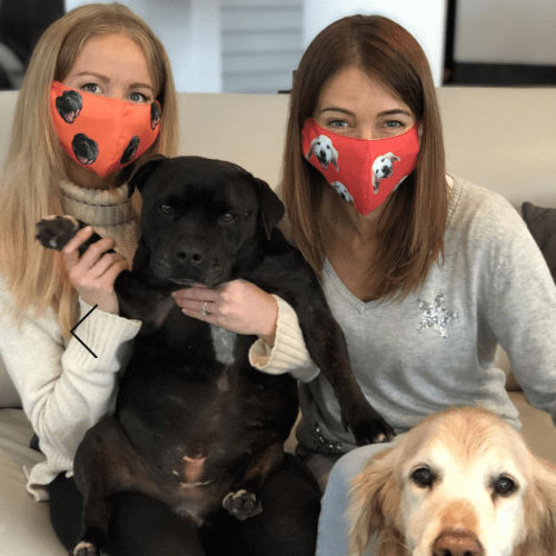 You Can Buy Face Masks With Your Pets Face On Them – And All Proceeds Go To Charity