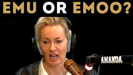 Emu Or Emoo?