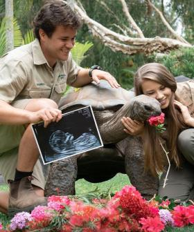 """You Are Our World"": Bindi Irwin And Chandler Powell Reveal They Are Expecting A Girl!"