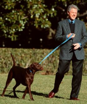 http://President%20Bill%20Clinton%20walks%20from%20the%20White%20House%20with%20wife%20Hillary%20and%20his%20dog%20Buddy%20December%2030,%201998.%20The%20Clinton's%20will%20ring%20in%20the%20New%20Year%20with%20friends%20and%20celebrities%20at%20a%20vacation%20retreat%20as%20lawmakers%20planned%20his%20impending%20impeachment%20trial%20in%20the%20Senate.%20(photo%20by%20Mike%20Holmes)