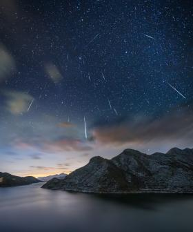 There's Going To Be A Meteor Shower Tonight!