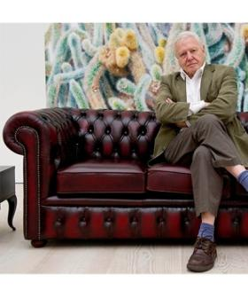 Sir David Attenborough Reveals A Big Change To His Life In Shock Interview
