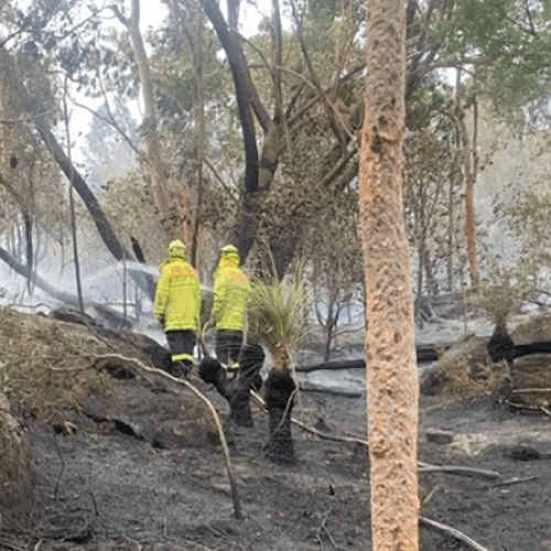 Firefighters Battle Bushfire Near Homes In Sydney's Southwest