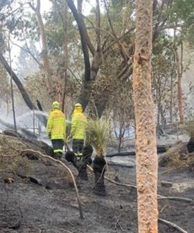 Firefighters Battle Bushfire Near Homes In Sydney's Southwest