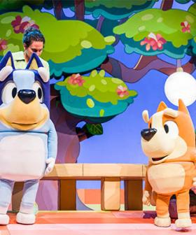"""Tap Your Foot And Hum"": Bluey Stage Show Says No Singing Allowed, Kids"