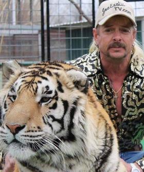 "Joe Exotic Claims He Was ""Too Innocent"" And ""Too Gay"" To Get Pardoned"