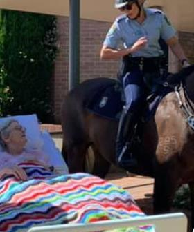 """NSW Police Grant Woman Her Dying Wish To """"Smell And See A Horse For One More Time"""""""