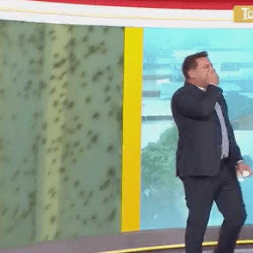 Karl Stefanovic Left HORRIFIED After Man Lets Spiders Crawl On Him