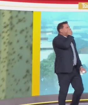 Karl Stefanovic Left HORRIFIED After Man Lets Spiders Crawl On Him