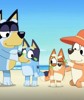 "'Bluey' Criticised For Not Having ""Disabled, Queer Or Single-Parent Dog Families"""