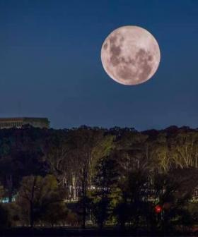 How To Catch The Super Blood Moon TONIGHT