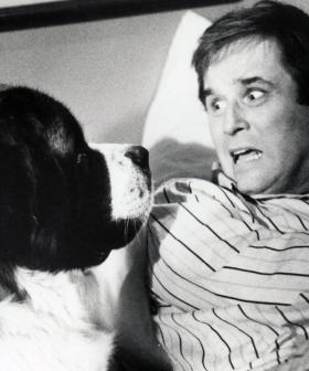 Charles Grodin, Best Known For Roles In 'The Heartbreak Kid' And 'Midnight Run', Dies At 86