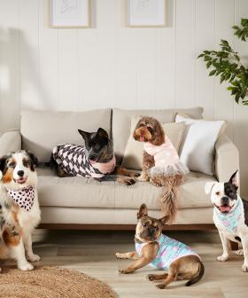 Big W Has Released A New Pet Line And You Can Get Your Dog A TUTU!?