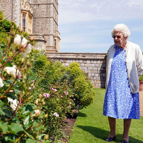 Queen Commemorates Prince Philip's 100th Birthday With A 'Duke Of Edinburgh Rose'