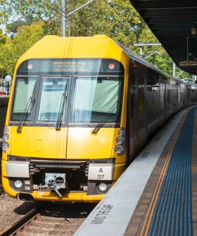 Sydney Public Transport Services Have Been Halved For The Next Fortnight