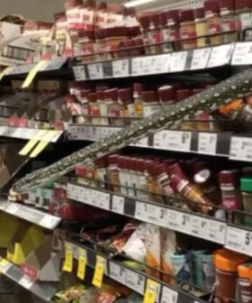 Sydney Shopper Discovers A THREE METRE PYTHON In Woolworths