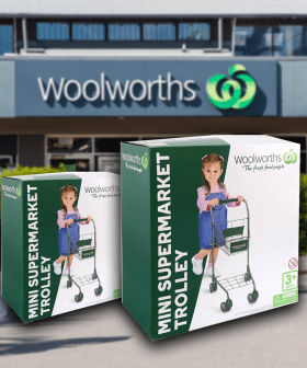 Woolworths Has Released A $30 Mini Supermarket Trolley For The Kids!